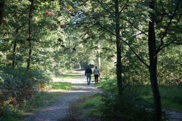 Wandelaars zondagmorgen