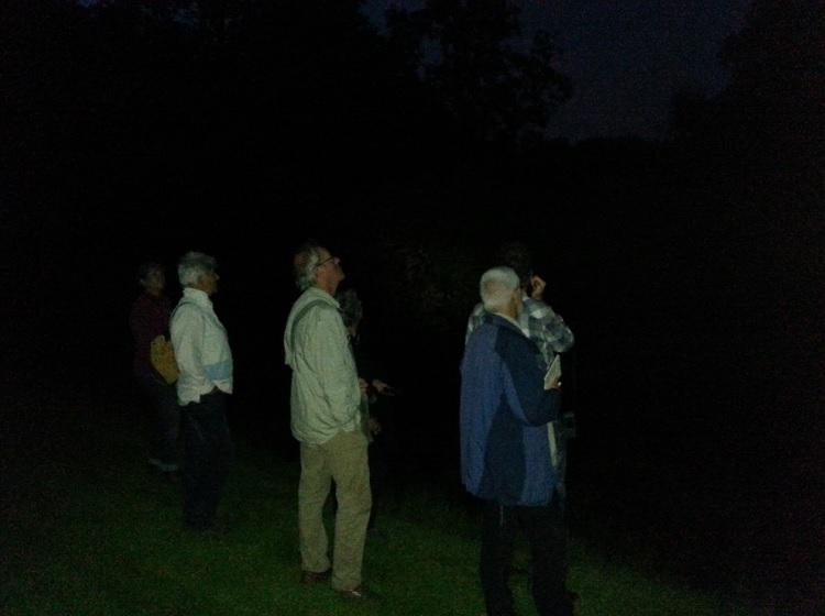 Vleermuizenonderzoek bij de vijver 750