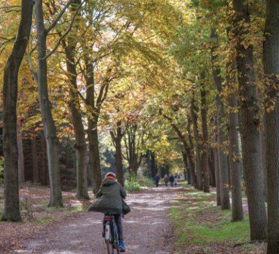 recreatie fietsen2