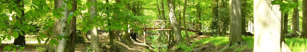 Eyckenstein_park_hoge brug-1024x176
