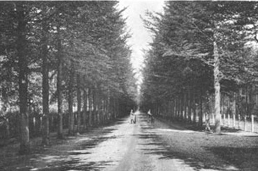 Gezichtslaan_1920