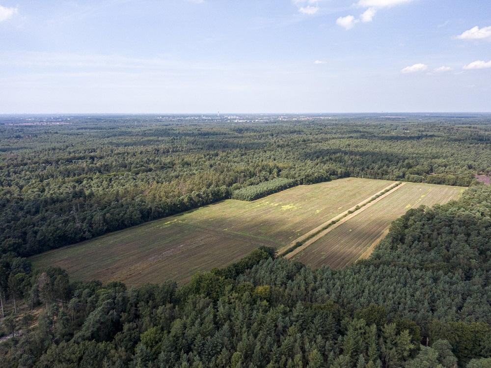 Omvorming Boetzelaersveld naar natuur in volle gang